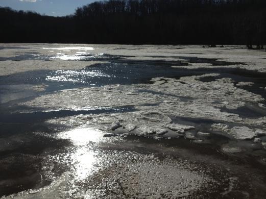 the Potomac in January copy